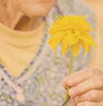 Estimulación sensorial en demencias avanzadas
